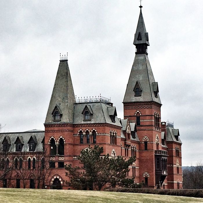 Sage Hall is considered High Victorian Gothic for it's multicolored decorations and various textures. Cornell University Architecture Design Landscape