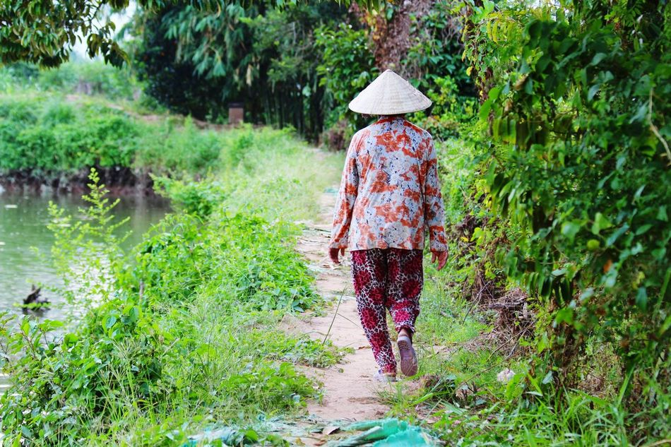 Beautiful stock photos of path, Asian Style Conical Hat, Beauty In Nature, Day, Landscape