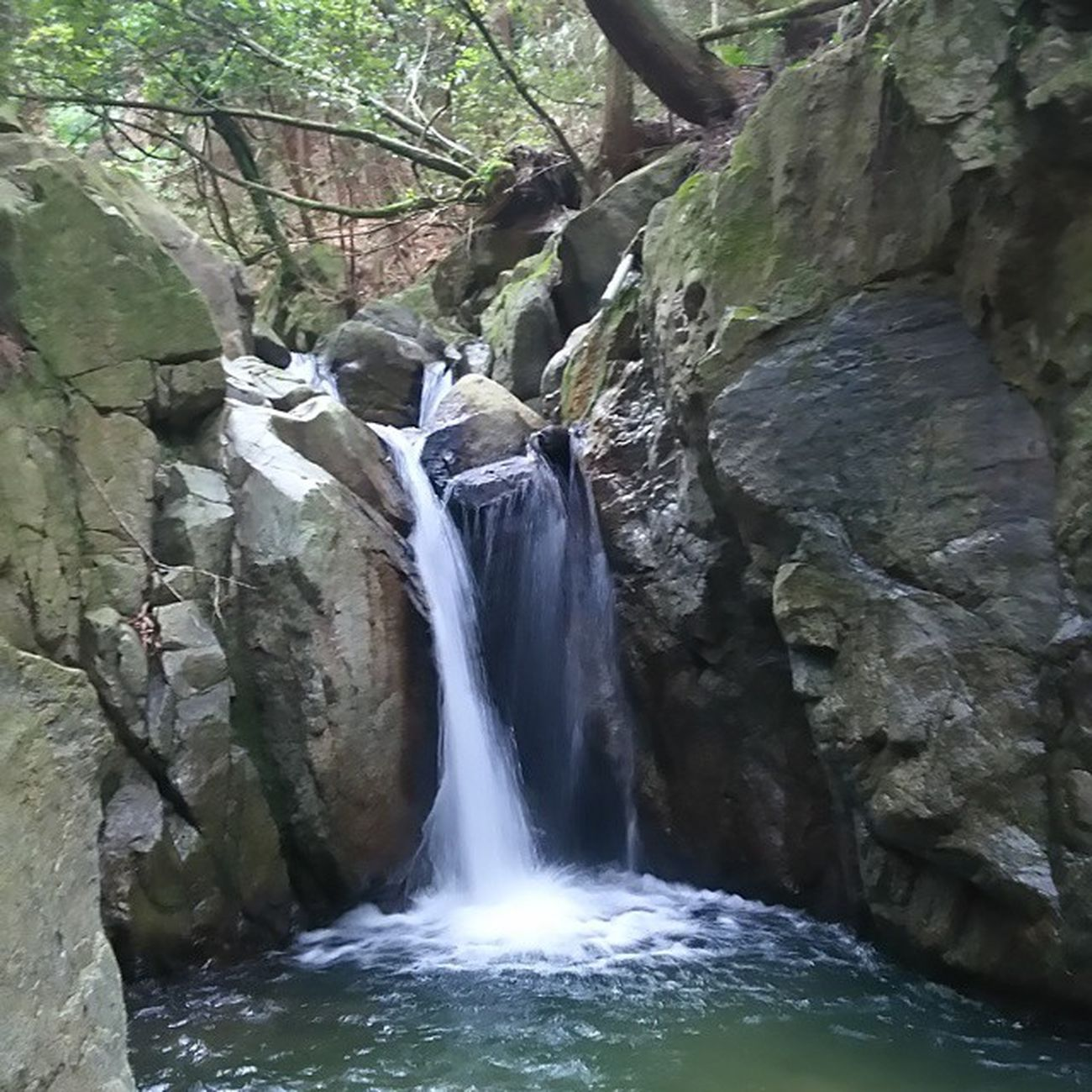 通りかかりに滝がある。やはり田舎。いい意味で。 滝 瀧 不動の瀧 自然 水 水辺 田舎