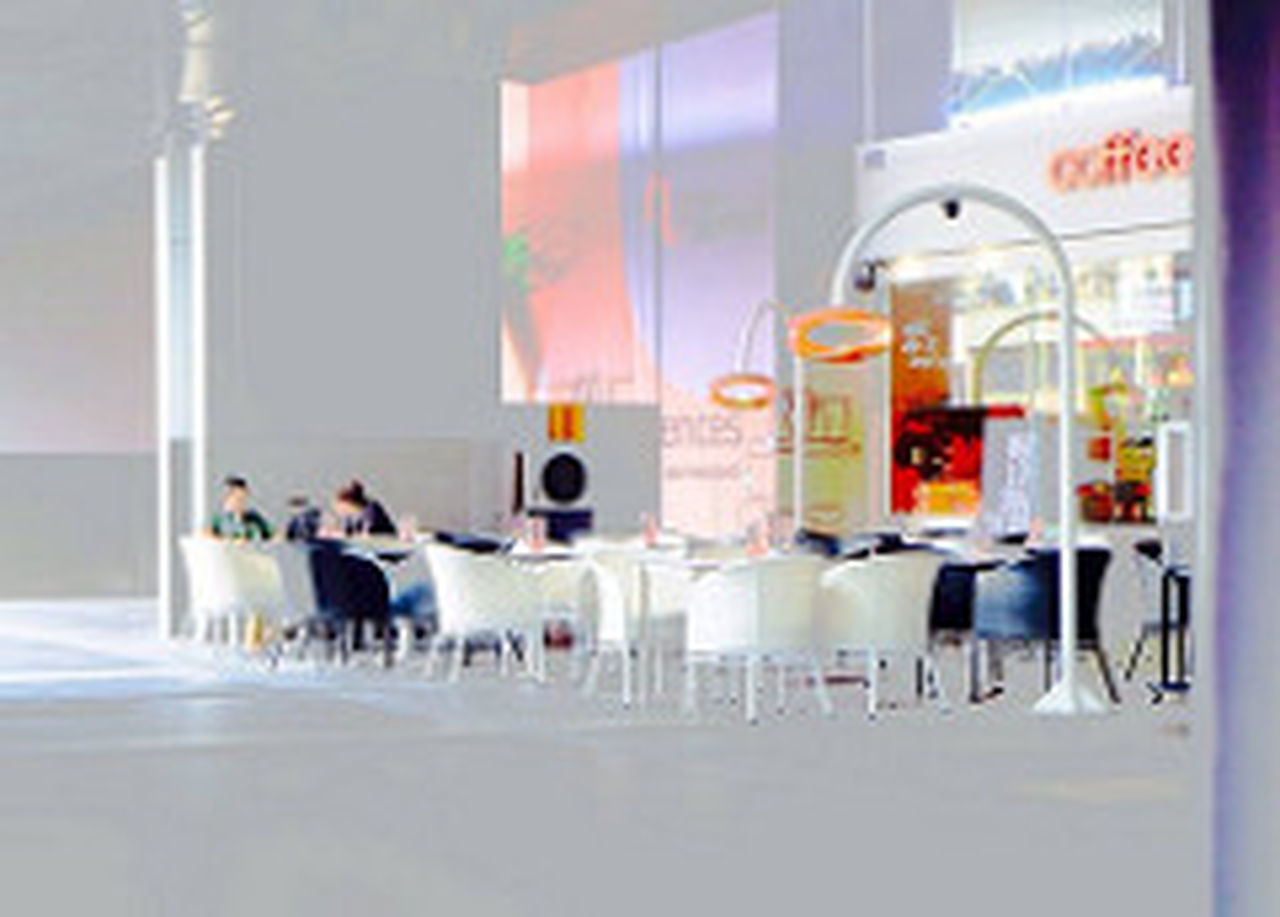 Architecture Cat Colourful Cafe Indoors  Kopitiam Morning Ne Sentral Sunlight Sunlight, Shades And Shadows Togetherness
