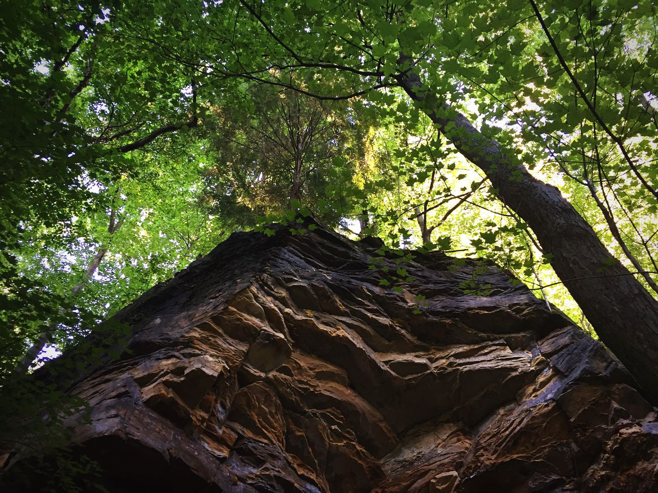 Amazing sights at the park! Rocks Walk Climb Park Nature Trees Sky