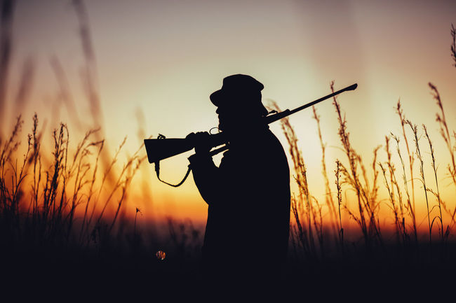 Hunter holding shotgun on shoulder and observing land in sunrise. High grass is sourrounding him Agriculture Aiming Field Hobby Hunter Hunting Lifestyle Long Grass Man Morning Nature Observe People Permit Shooting Shotgun Silhouette Skill  Sniper Sunrise Weapon Western Wild Animals Wilderness Wildlife