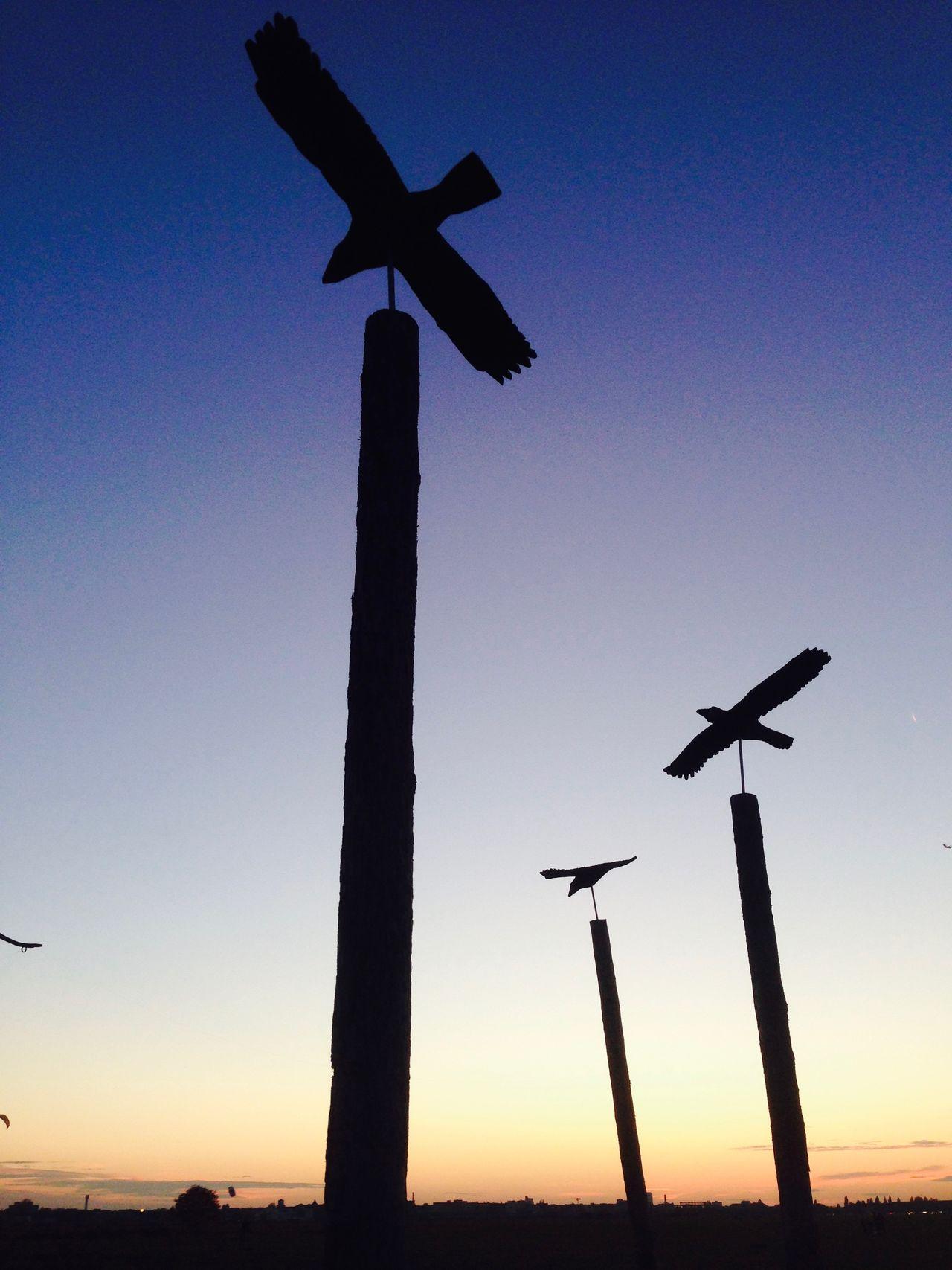 Berlin Day Nature No People Outdoors Silhouette Sky Sunset Tempelhofer Feld
