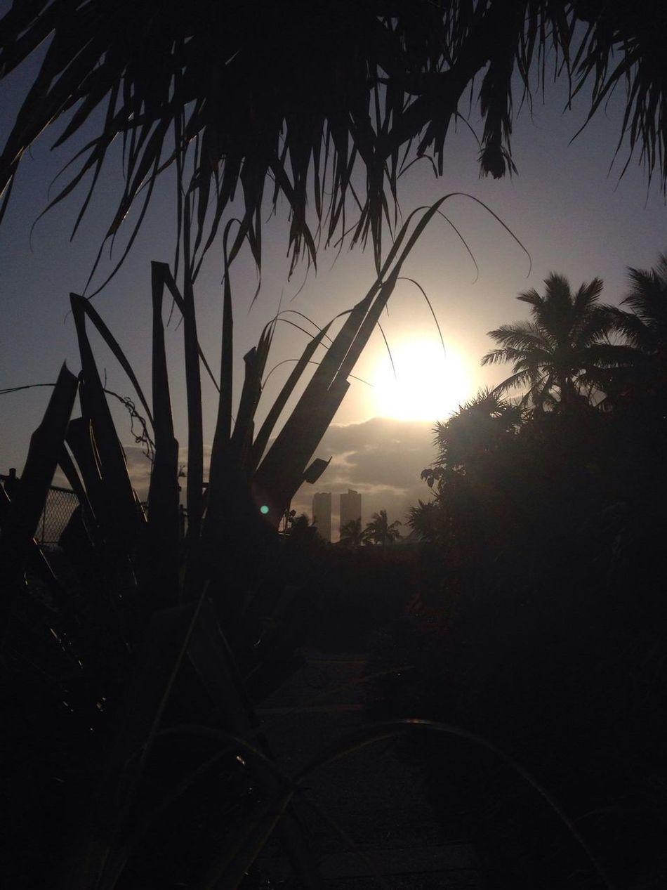 IPhoneography Sunset #sun #clouds #skylovers #sky #nature #beautifulinnature #naturalbeauty #photography #landscape