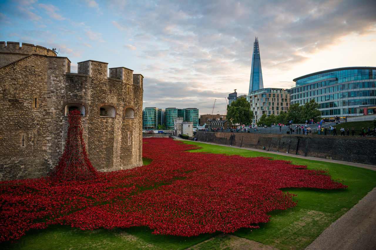 Architecture Building Exterior Built Structure City Cloud - Sky Day Flower Grass Great War London No People Outdoors Poppies  Poppies Field Poppy Red Red Shard Sky Tower Of London Travel Destinations Wwi