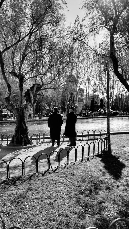 Old People Old Lovers Light And Shadow Park The Moment - 2015 EyeEm Awards