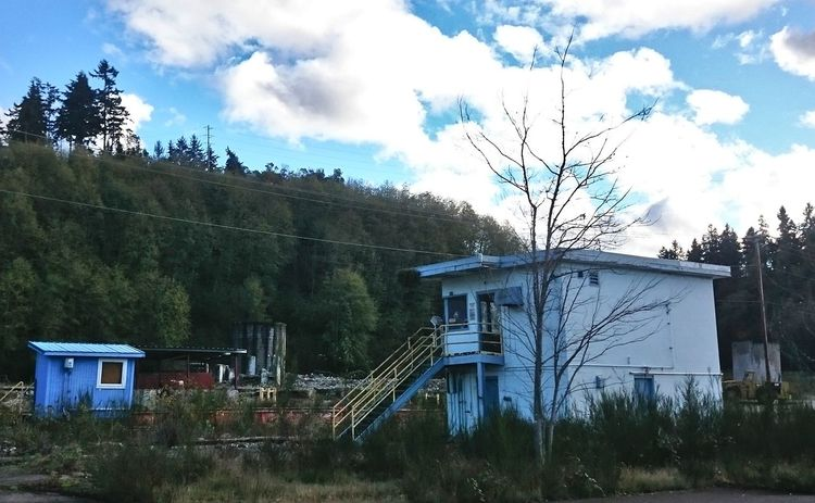 Abandoned Blue Building Exterior Derelict No People Overgrown Pacific Northwest  Sky