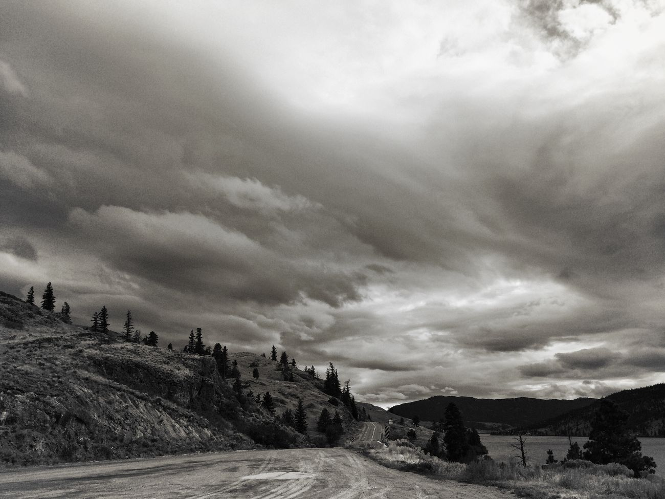 The Road Less Travelled Landscape Nature From My Point Of View Monochrome