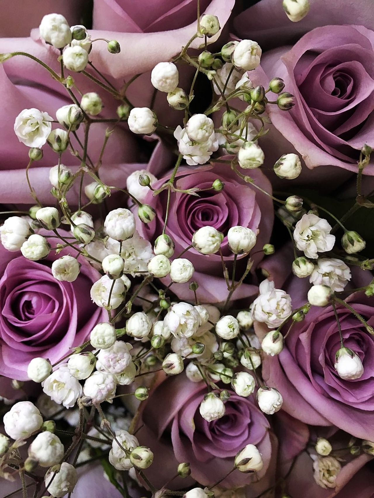 Flower Rose - Flower Bouquet Pink Color Beauty In Nature Fragility Petal Wedding Flower Head Purple Flower Arrangement Nature Freshness Blossom Peony  No People Hydrangea Indoors  Beauty Hyacinth