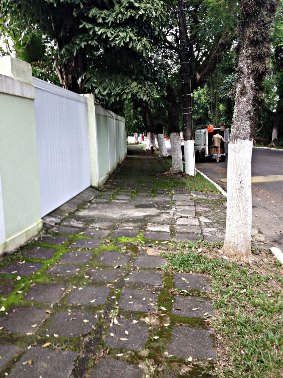 The Street Where We Live