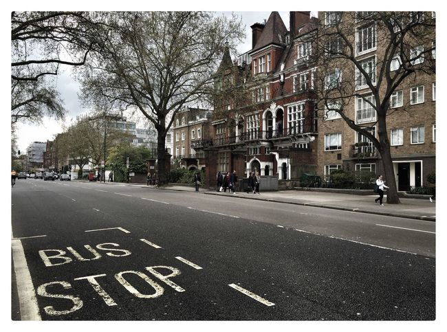 Bus stop a Londra city Tree Building Exterior Street Architecture Built Structure City Car Outdoors No People Bare Tree Day