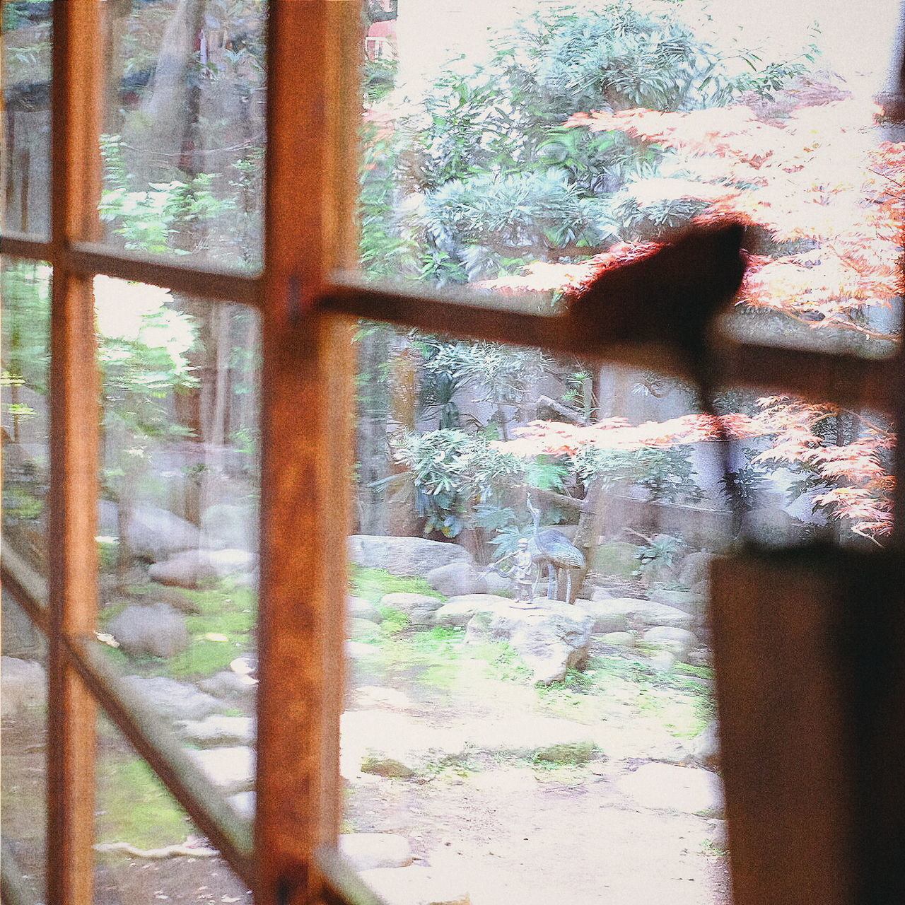 The Perks of being a wallflower. Ryokan Japan