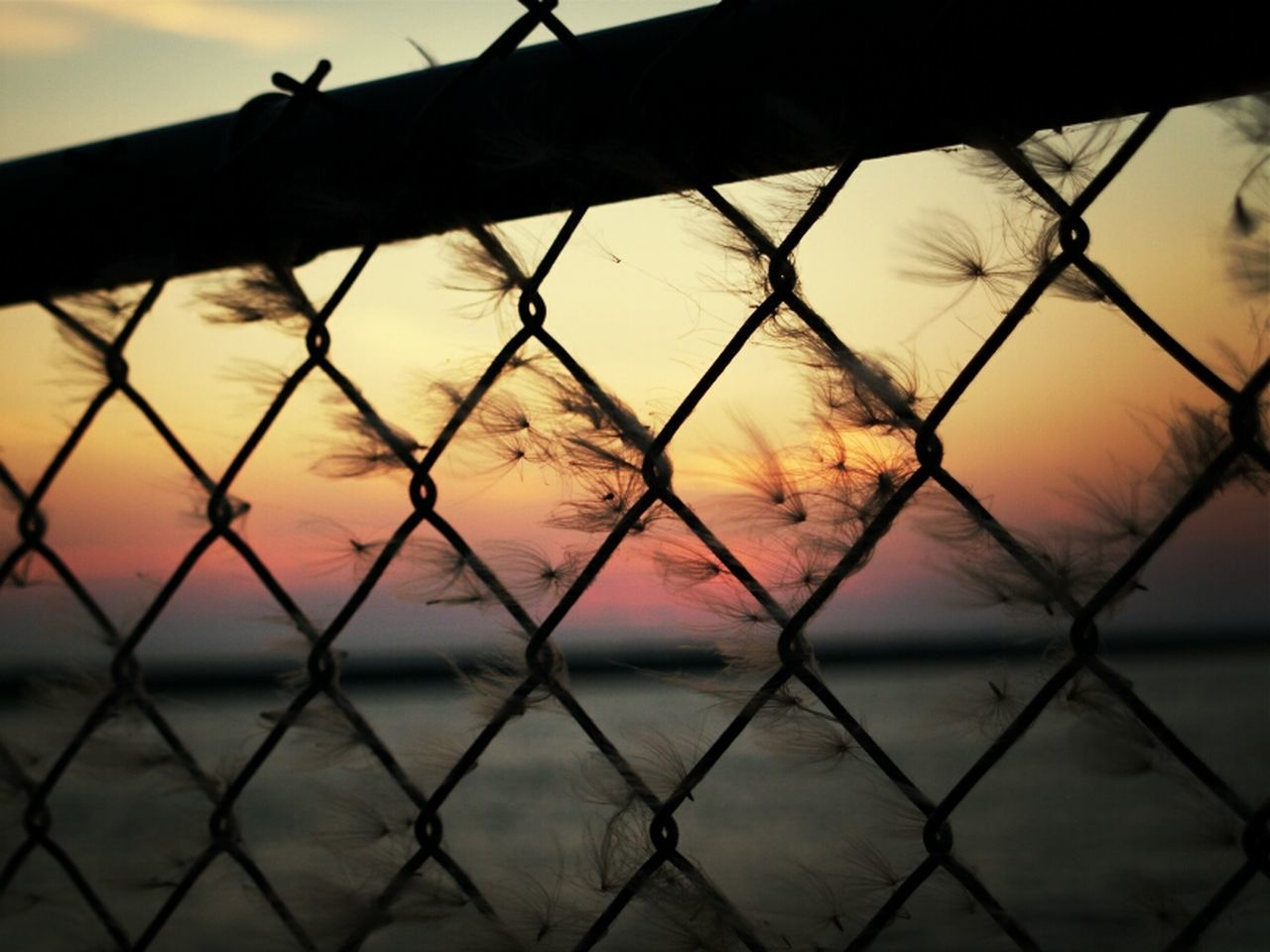sunset, safety, chainlink fence, sky, protection, nature, metal, beauty in nature, water, security, outdoors, scenics, no people, sea, focus on foreground, sun, silhouette, tranquility, tranquil scene, close-up, cloud - sky, day