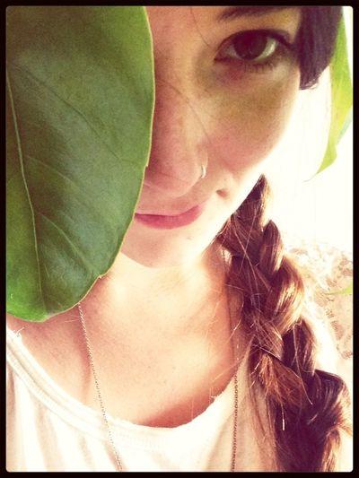 Blätterkrönung