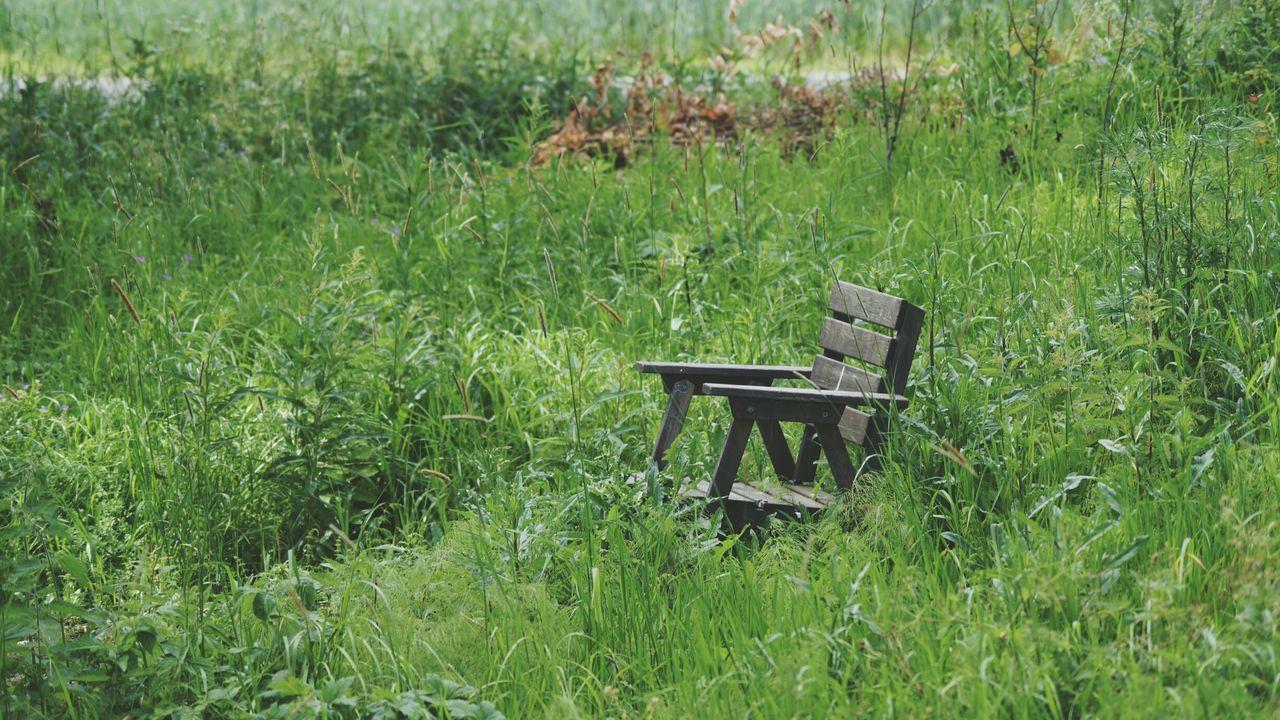 Empty Seats In Field