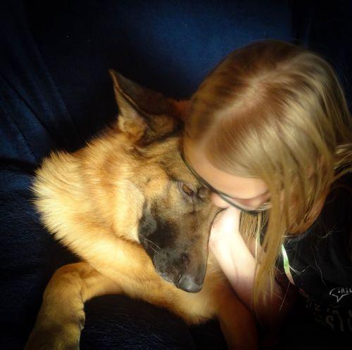 True love German Sbepherd Pets Domestic Animals One Animal Dog One Person Mammal Indoors