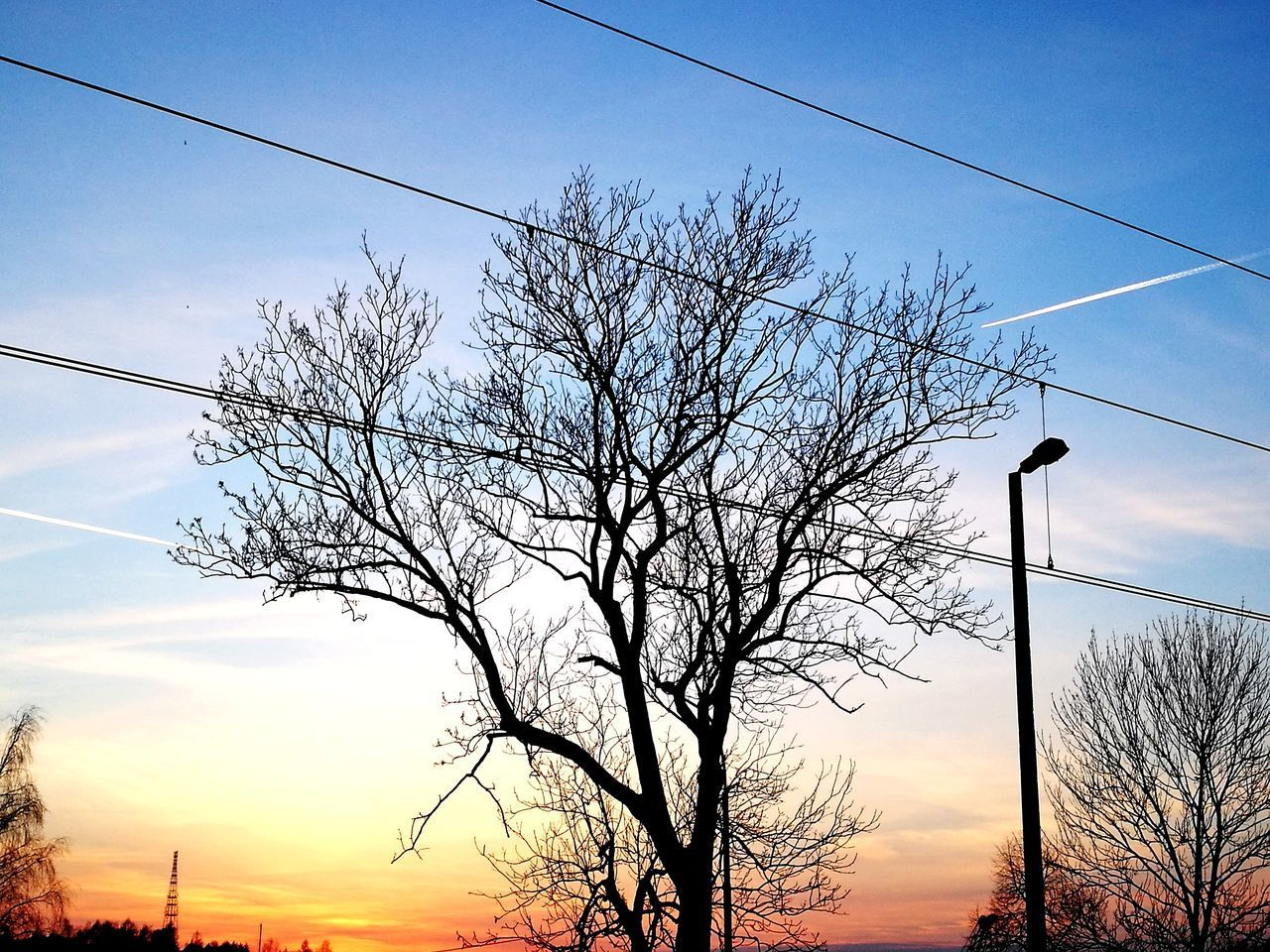 Sunset 😱 Sunset✨trees✨ Sunset Sunlight No People Sky Nature Beauty In Nature Day Tree Spring Is Coming Soon 🌸🌷🍀🌹🌻🌺 Reflection What Do You Think? Happy :) Sun Fun Amateurphotography Nofilter No Filter, No Edit, Just Photography Train Station Nature Natural Beauty Beauty In Nature Smartphone Photography HuaweiP9 Cloud - Sky