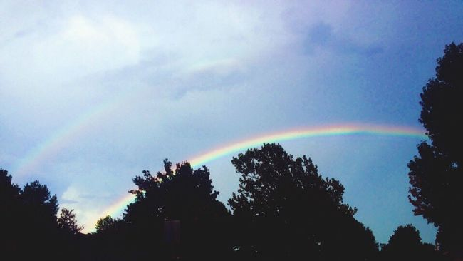 Double Rainbow Double Rainbows Tree Silhouette Rainbow Scenics Multi Colored Beauty In Nature Tranquil Scene Sky Growth Tranquility Cloud - Sky Nature Majestic Treetop Natural Phenomenon Atmosphere Outdoors Day Outline Atmospheric Mood Tulsa, Oklahoma