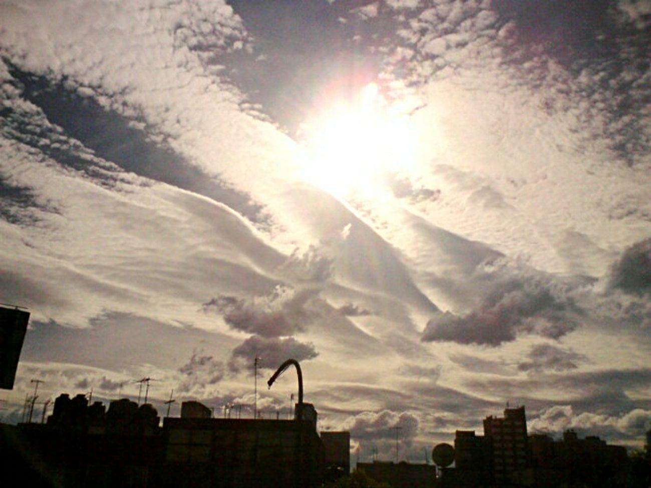 La mejor foto tomada por mi perspectiva. Febrero2012 Aves Nubes Urbanphotography Photography Bestphoto Sky