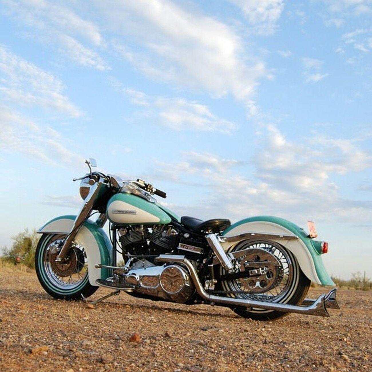 Harley Harleydavidson Shovelhead Flh 1976electraglide