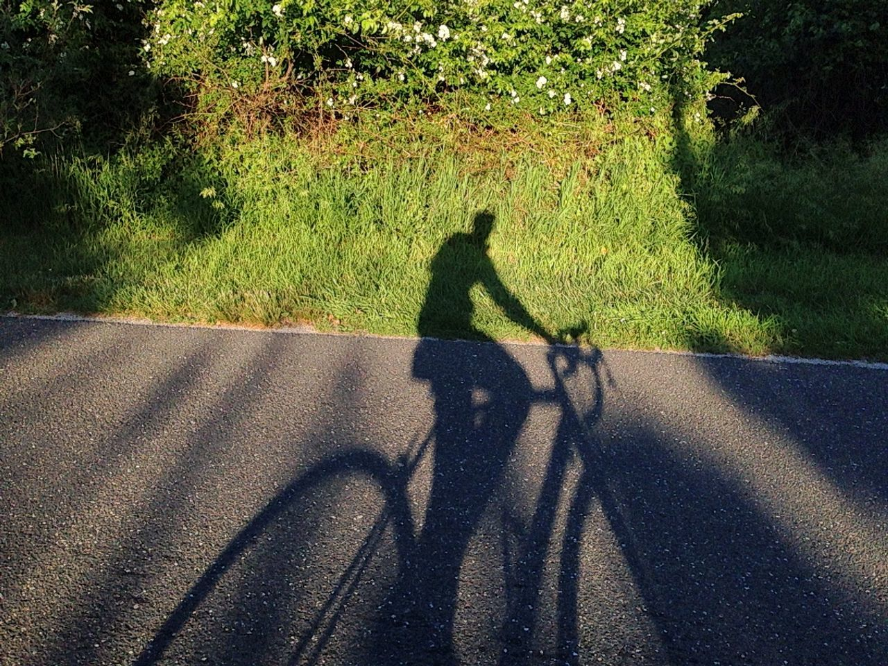 Beautiful stock photos of bike, Bicycle, Country Road, Day, Grass
