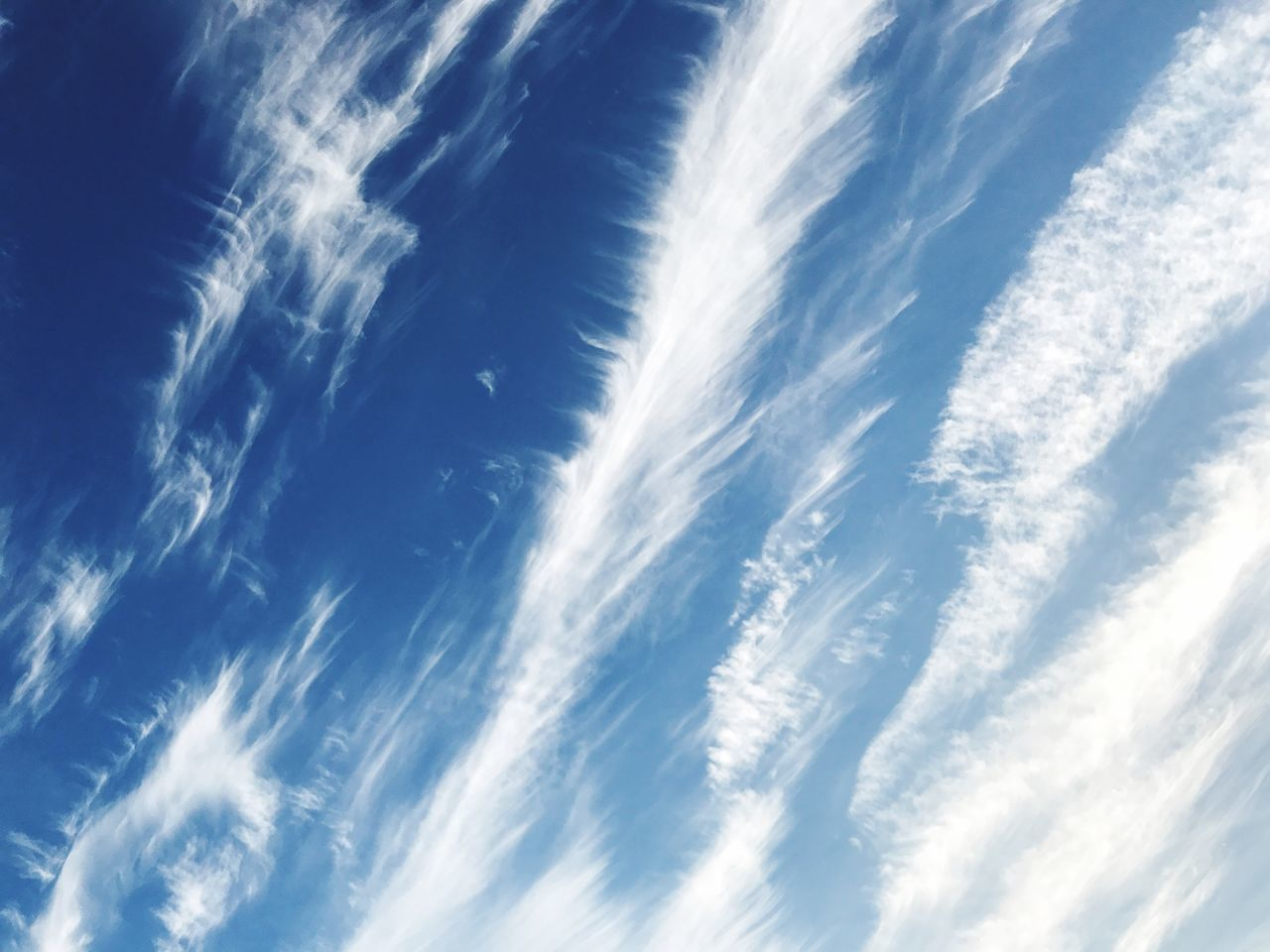 Sky over San Francisco // Sky Vapor Trail Cirrus Low Angle View Scenics Nature White No People Speed Outdoors Beauty In Nature Cloud - Sky Backgrounds Day Contrail Waterfall