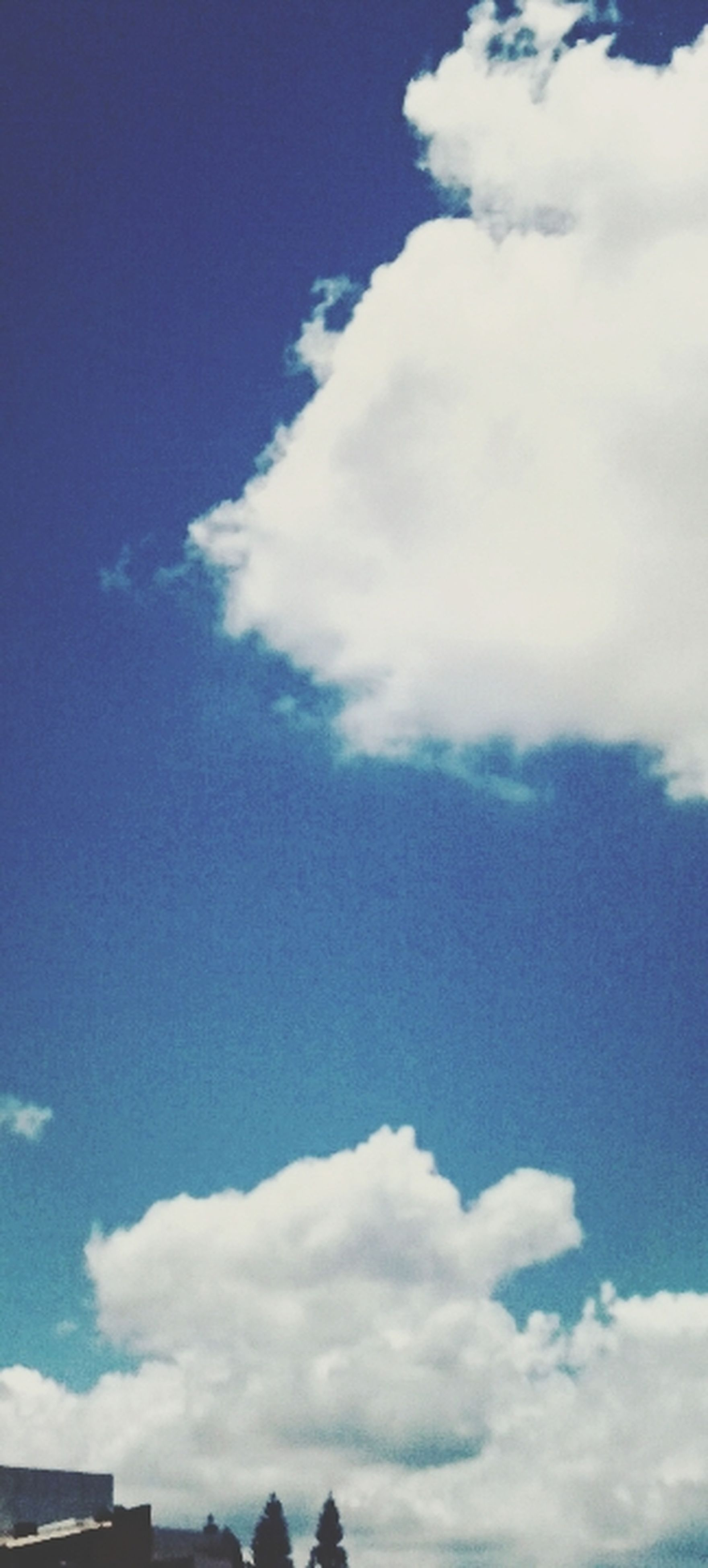 low angle view, sky, blue, cloud - sky, beauty in nature, cloud, nature, tranquility, white color, scenics, tranquil scene, cloudy, day, outdoors, white, no people, cloudscape, idyllic, sunlight, high section
