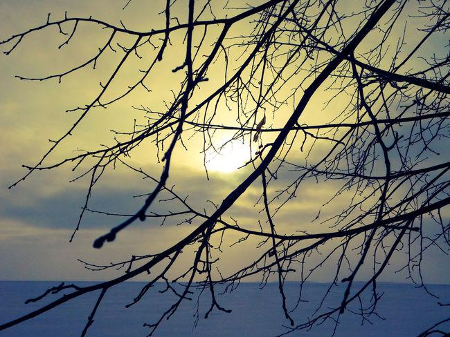 Lake Nipissing Majestic Nature Northern Ontario Outdoors Sunset Sunset Over Lake Winter