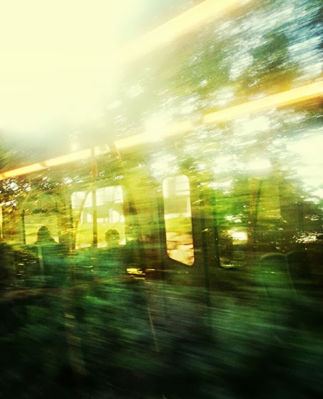 blurred motion, no people, window, built structure, outdoors, nature, building exterior, architecture, day, grass, tree, sky