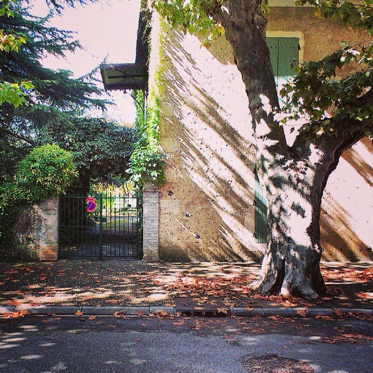 Viviers France Rhonealpes Rhône Instagram Instaphoto