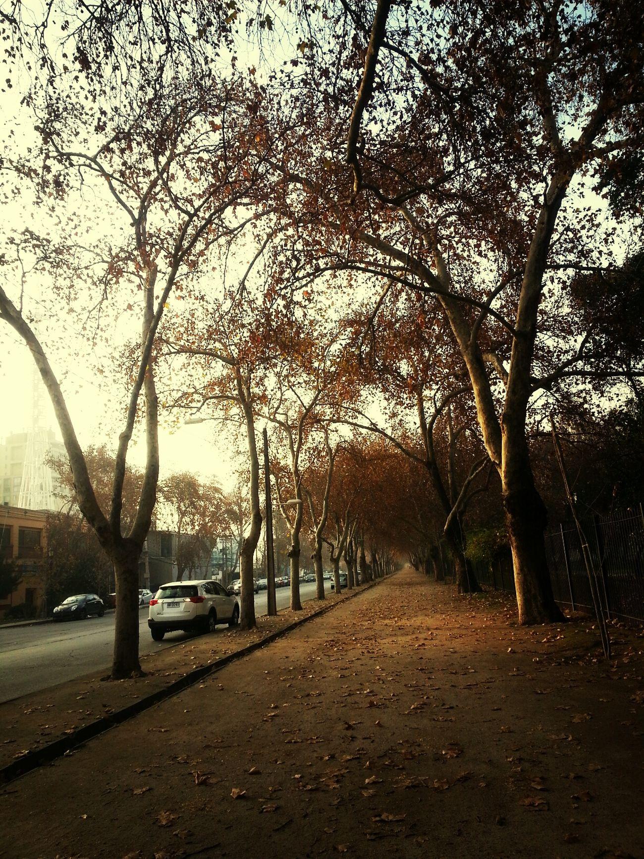 Luz.....claridad.....serenidad Relax :) De Caminata Free Day