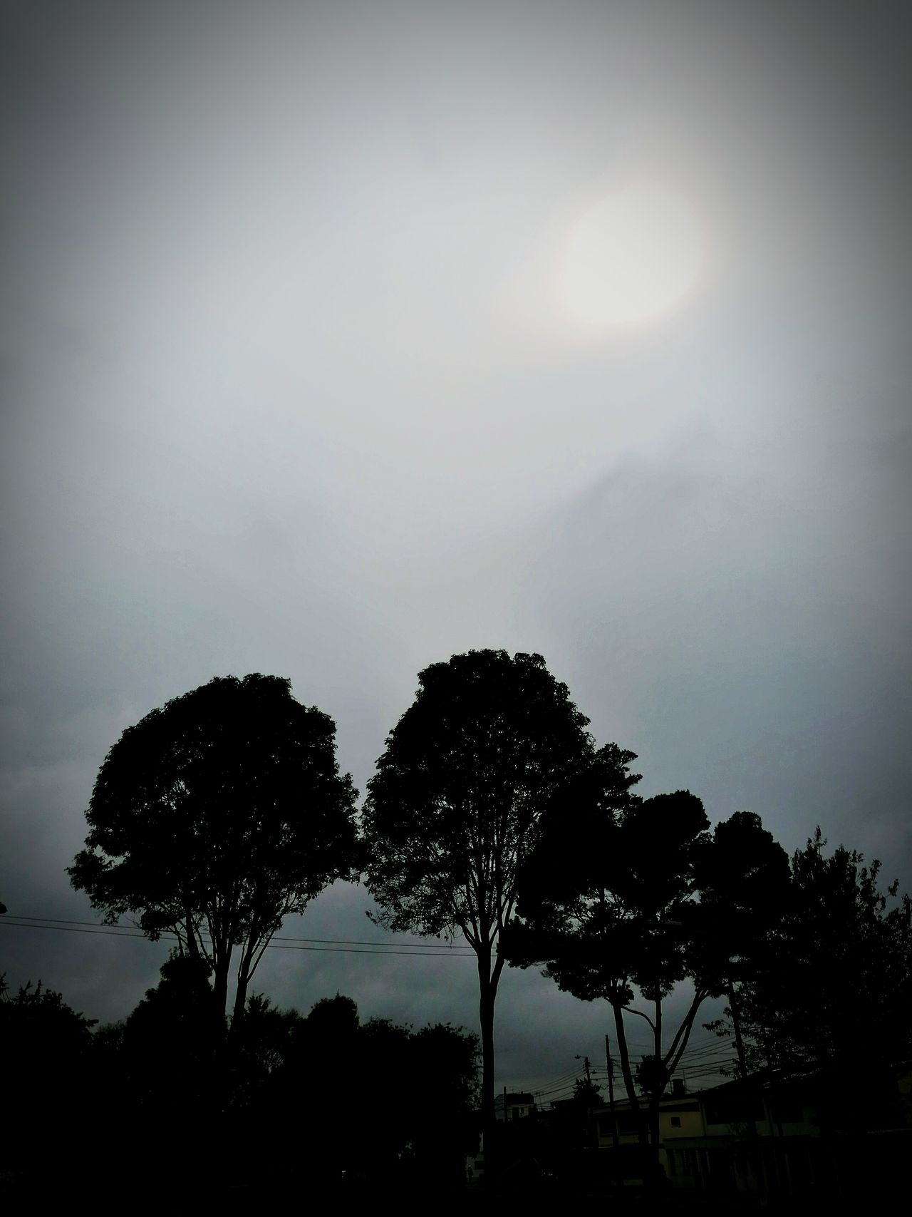 Tarde nublada....