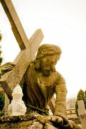 Cmentarz Cementery Cemetary Cemetery