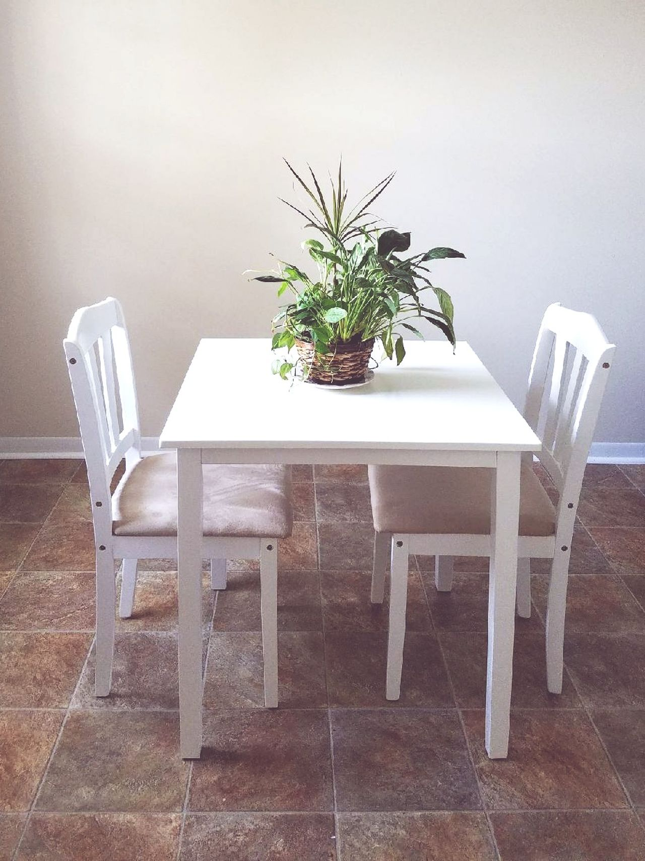 Chair Table Indoors  Home Interior Potted Plant No People Home Showcase Interior Furniture Living Room Place Setting Day Dining Room Table Dining Room Bright Interior Springtime