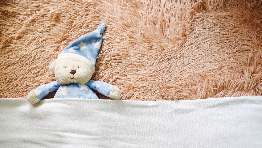 Mr. Teddy Bear Animal Body Part Animal Head  Bed Time Stories Bedtime Close-up Day Feather  Lying Down No People Resting Story Of My Life Stuff Toy Teddybear The Week On EyeEm EyeEm Phillipines Home Is Where The Art Is