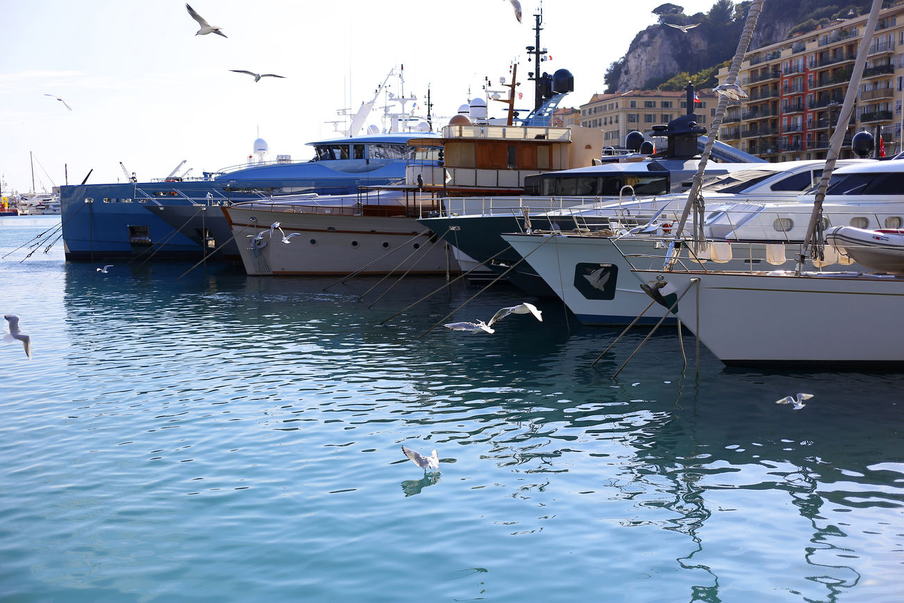 Animal Themes Azur Bird City France Harbor Limp Mode Of Transport Nature Nautical Vessel Nice No People Outdoors Seagull Transportation Traveling Water
