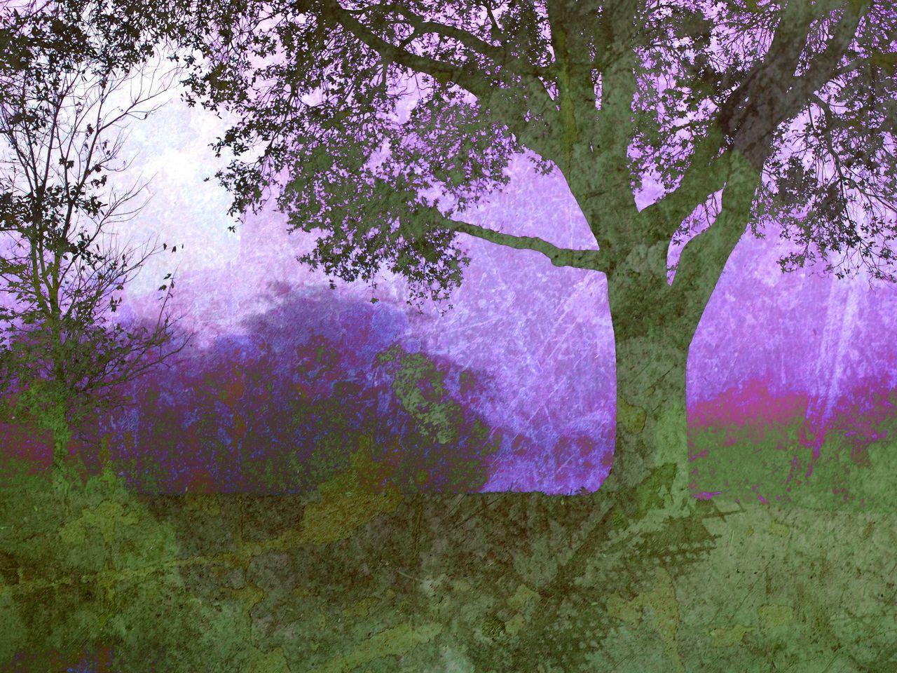 Eye Em Landscape-Collection NEM Landscapes Wearegrryo AMPt_community sgs4, stackables