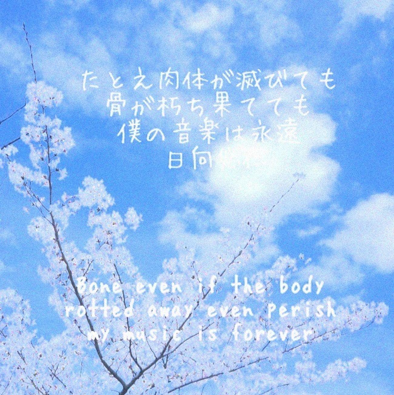 Art HISAHITO Hi On The Road