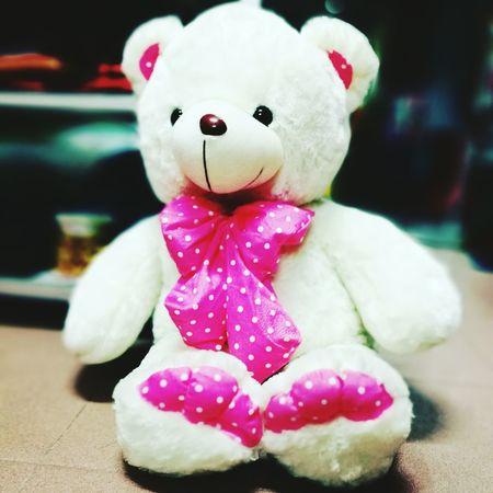 Cute teddy bear Childhood Looking Beautiful Attractive