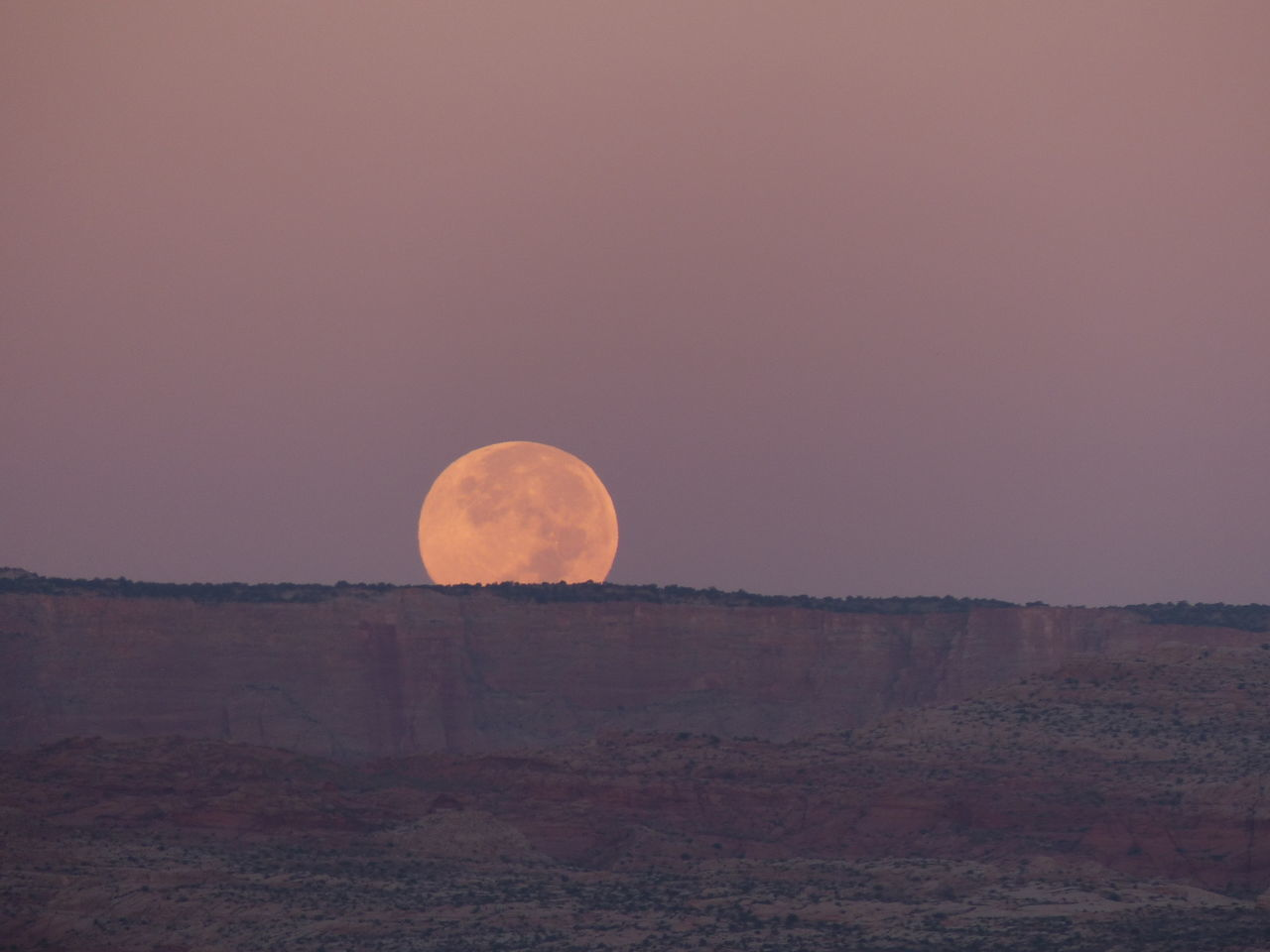 Beauty In Nature Moon Moonset Nature No People Outdoors Sky