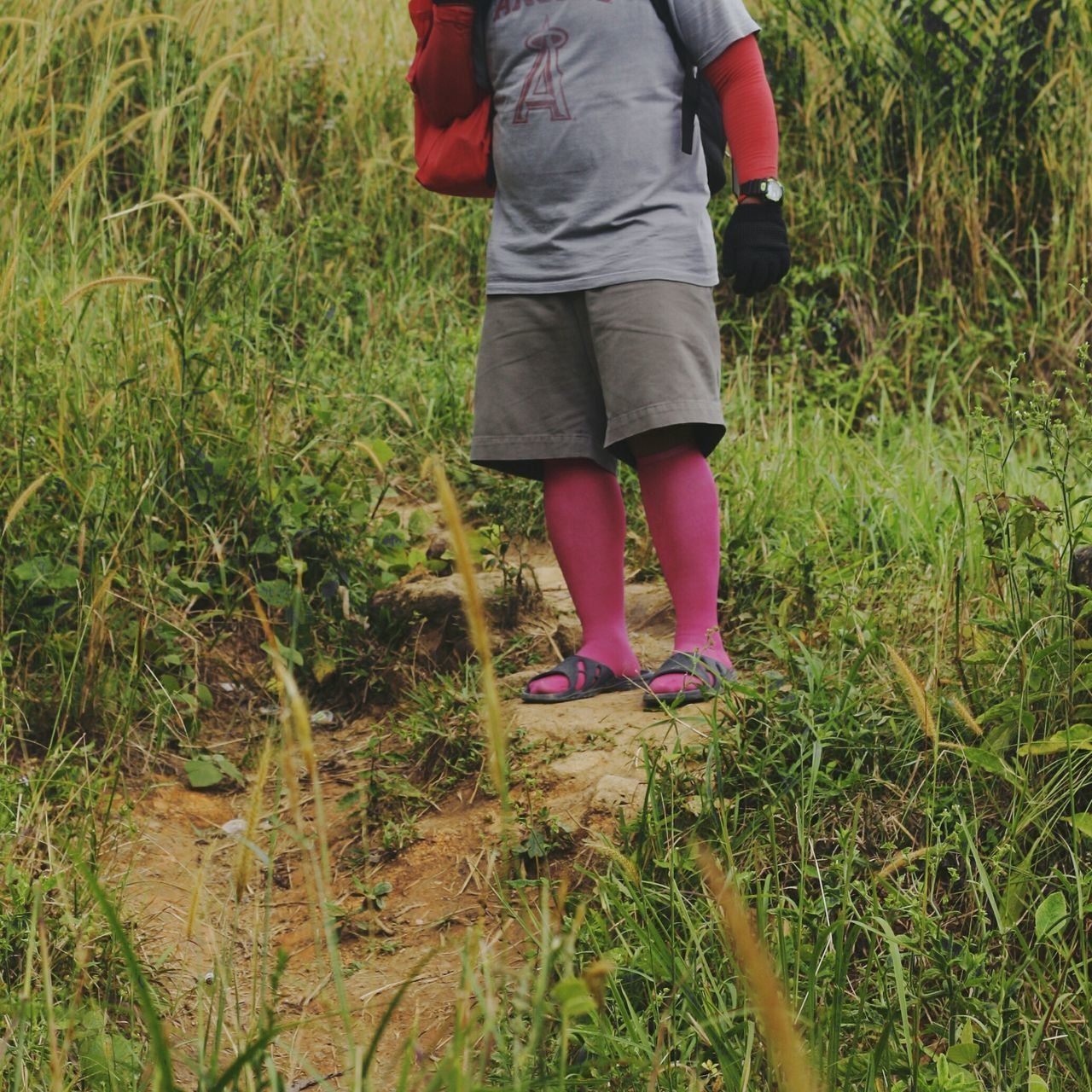 Low Section Grass One Person Day Human Leg Field Standing Casual Clothing Outdoors Lifestyles Human Body Part BYOPaper! Live For The Story The Street Photographer - 2017 EyeEm Awards Pink Socks Fuschia Colorful Socks