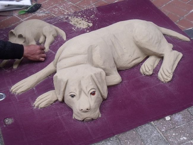 Concentration Working On This For Hours Street Artist Close-up Dog Dog Made With Sand Art Work