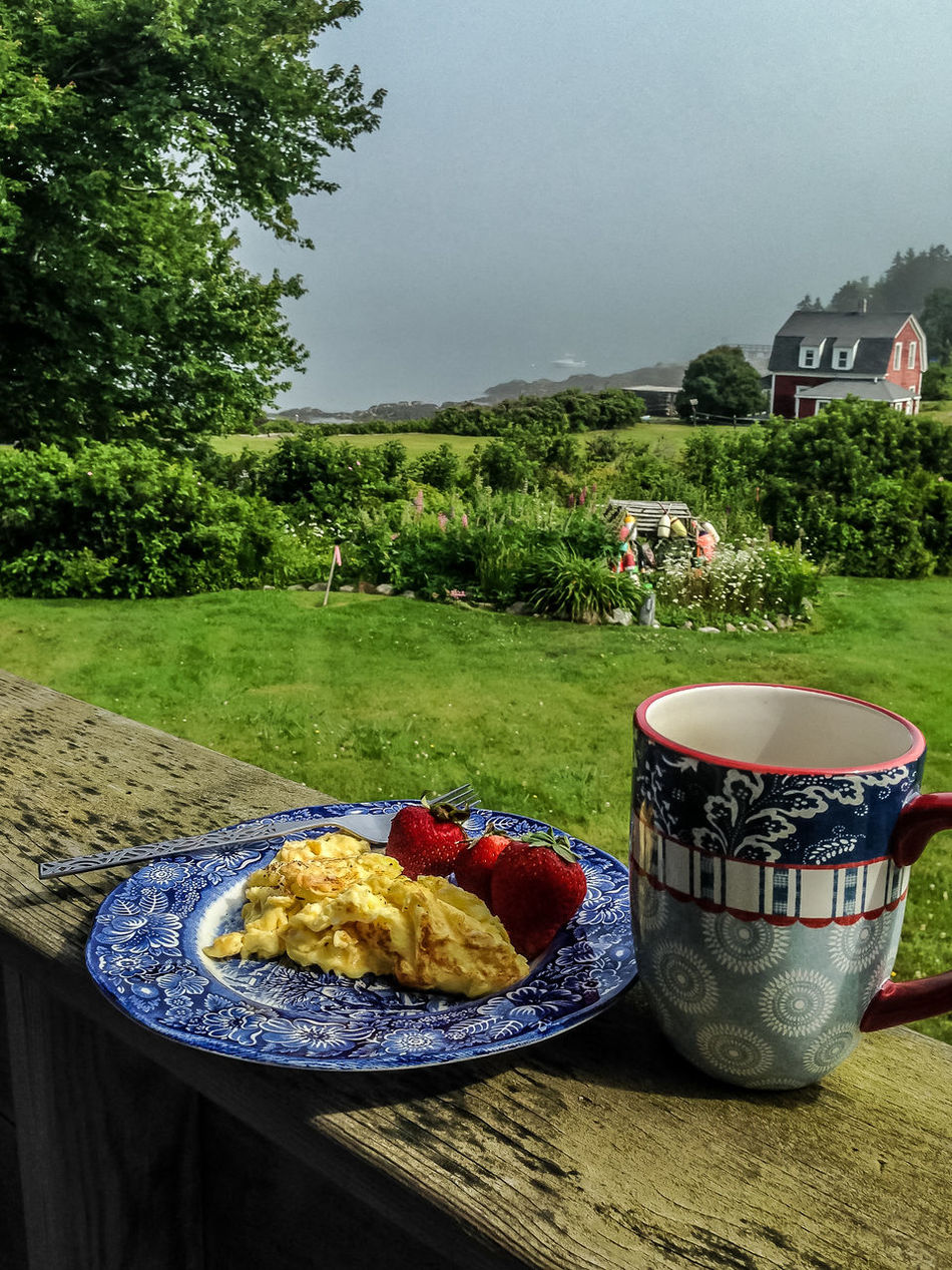 Bar Breakfast Breakfast With A View Buoy Coffee Field Grass Green Color Maine Nature Ocean Sky Water View Waterfront