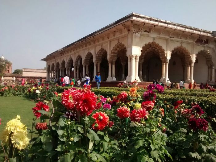 """gardens of Agra fort blooming with freshness and tranquility, growing on the poor piece of land which was the center of power of the Mughal dynasty ruling the subcontinent for 3 centuries, incorporating the public in their administration by organising public meeting with the Emperor at the Hall of Audience or """"Diwan-e-aam"""" Agra Serenity ROYALITY MughalStyle Architecture March2015 Mobilephotography The Traveler - 2015 EyeEm Awards The Architect - 2015 EyeEm Awards"""