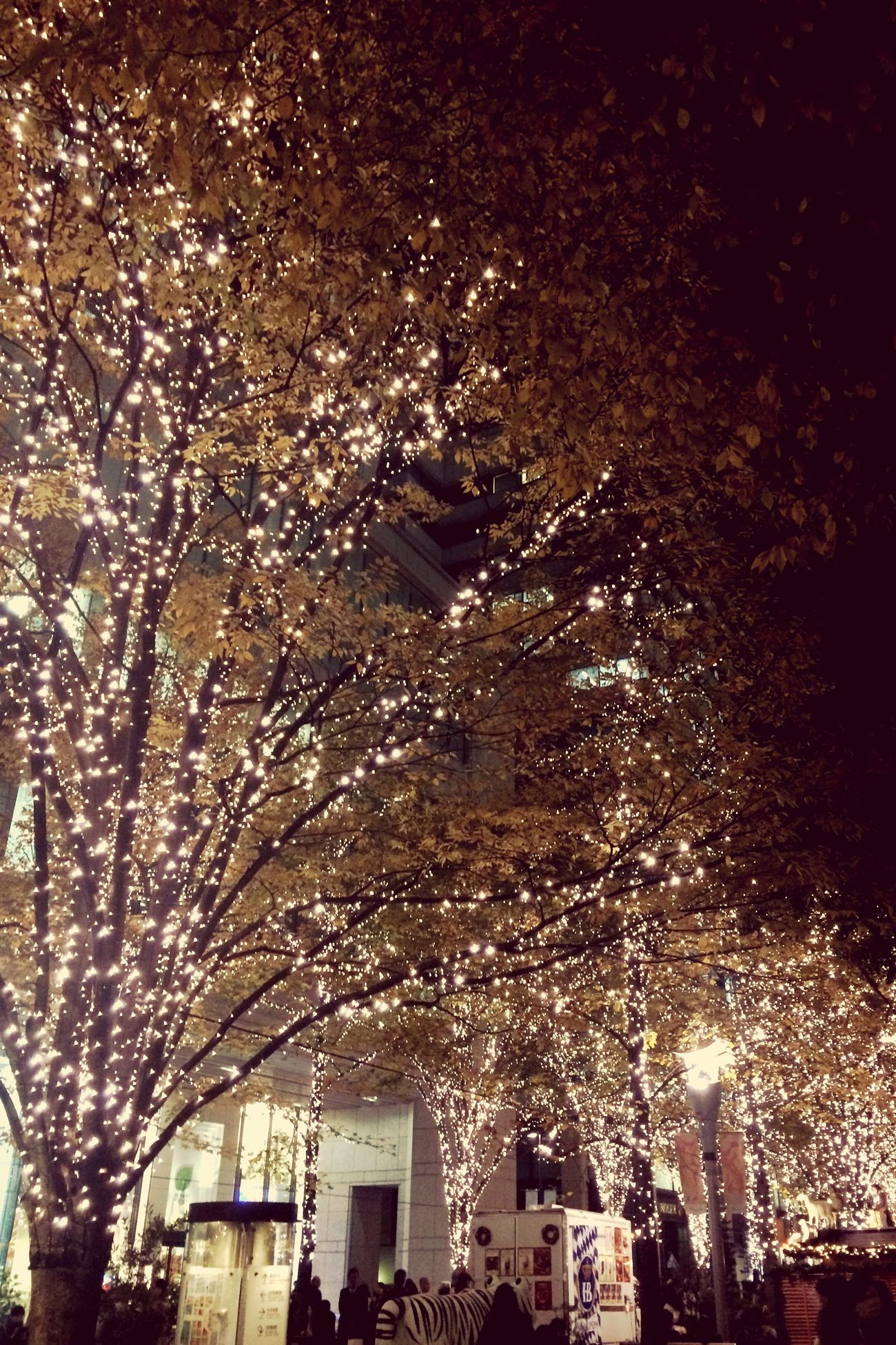 Noël du Tokyo