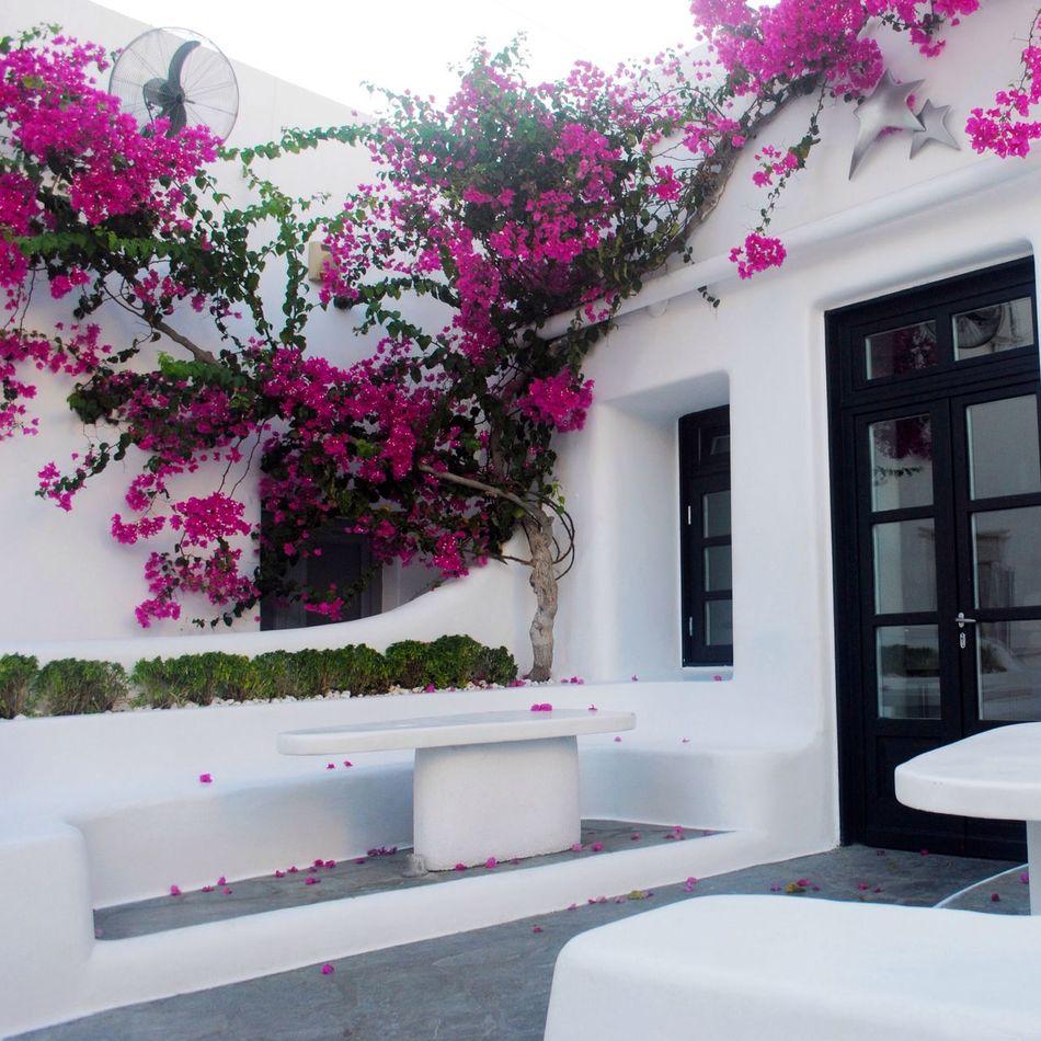 Mykonos Town Mykonostown Greece First Eyeem Photo