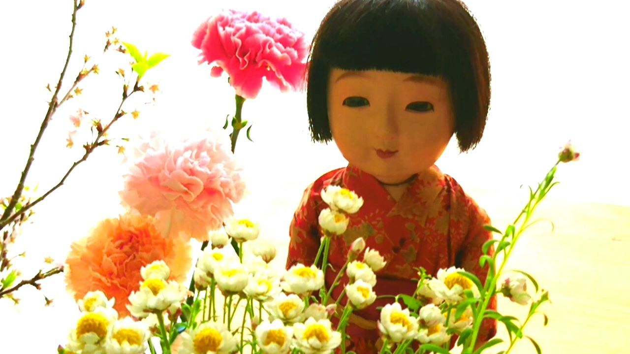 市松人形 日本人形 Japanesedoll Ichimatsu