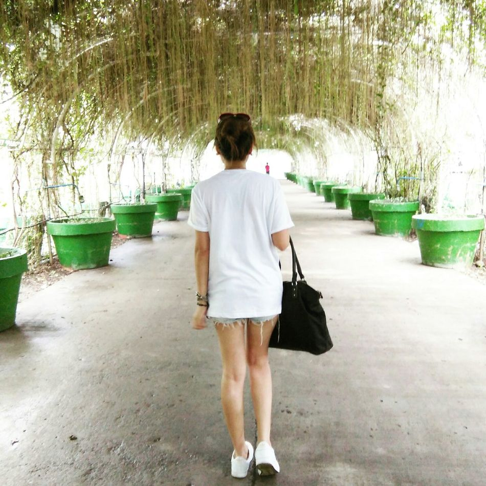 Woman Never Look Back  Nature