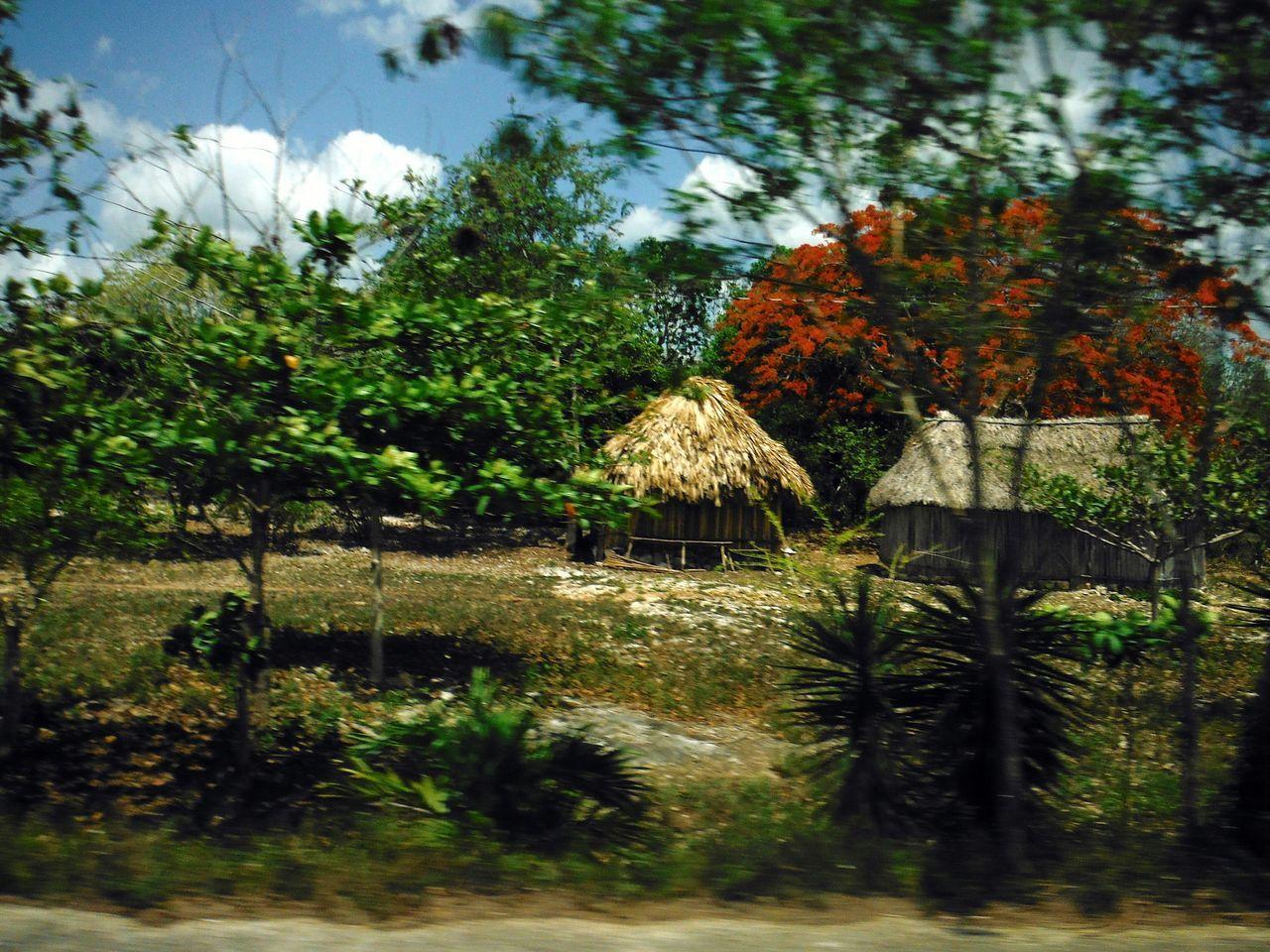 Mexico Yucatan Mexico Huts Casitas