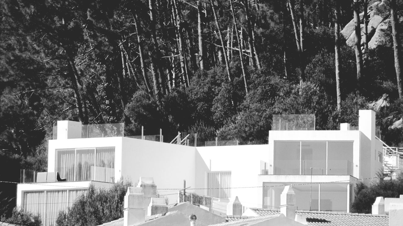 Houses near the nature... love this.. Monochrome _ Collection Eyeem Monochrome My Monochrome World Monocrhome